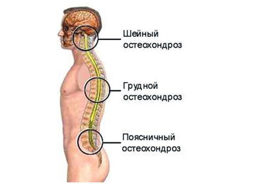 Грибок ушей симптомы и лечение
