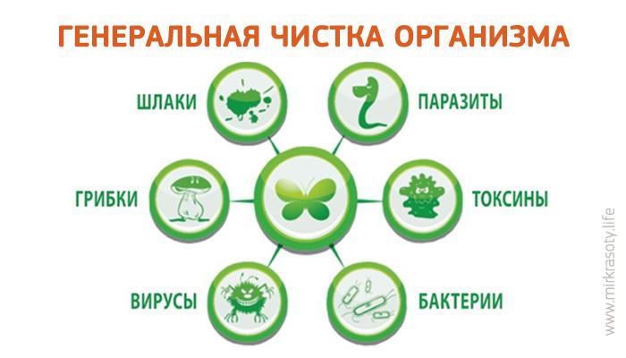 лекарство для очищения кишечника от шлаков