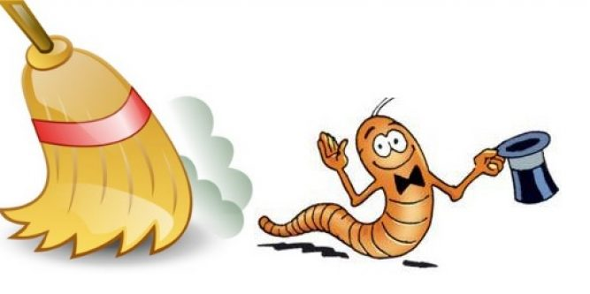 Часто люди, которые уже заражены, не понимают, что их питомцы могут бить переносчиками большинства существующих паразитов.