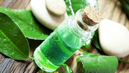 Эфирное масло чайного дерева применяется при снижении иммунитета, для дополнительной терапии при хронических и острых эмоциональных расстройствах, понижении работоспособности, внимания. Кроме того, оно препятствует росту и дальнейшему делению клеток новообразований.
